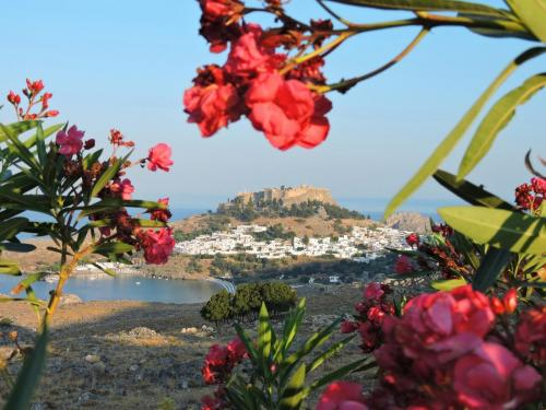 Panoramic nature view of Ancient lindos, part of private tours
